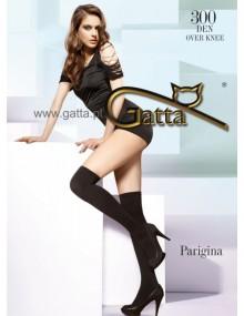 Подробности про  Гетры и гольфины Gatta Parigina 300